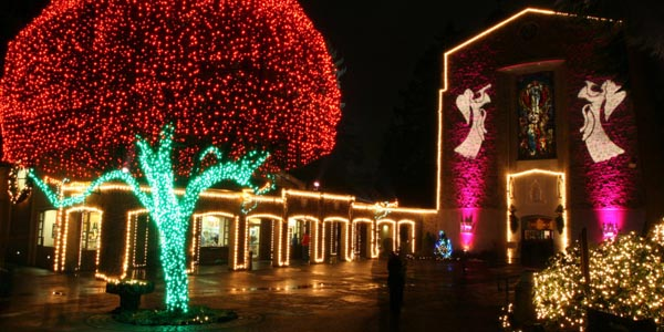 Christmas Festival In India.Christmas Festival In India India Tours