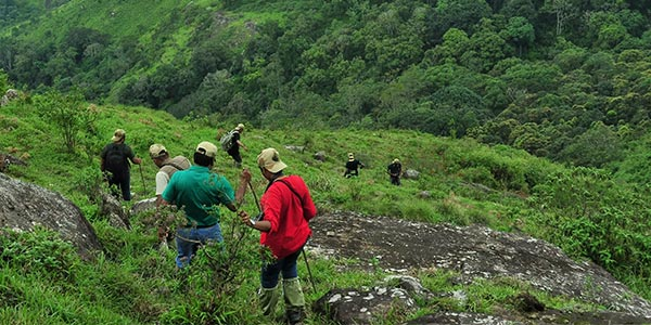 Eco-tourism circuit is to be developed soon in Maharashtra