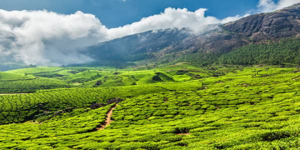 Kerala tops the list of top 20 global trending destinations for 2020
