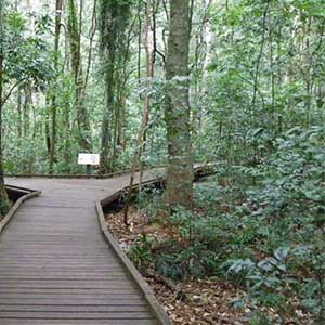 Victoria nature park