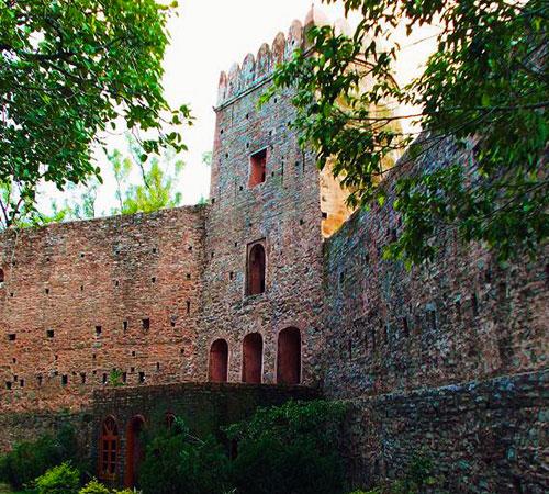 Morni Fort: The Golden Bastions