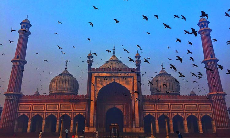 Holiday Packages for Delhi, Jaipur, Agra with Experience