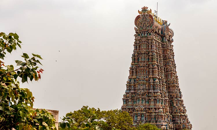 Best of Tamil Nadu tour package