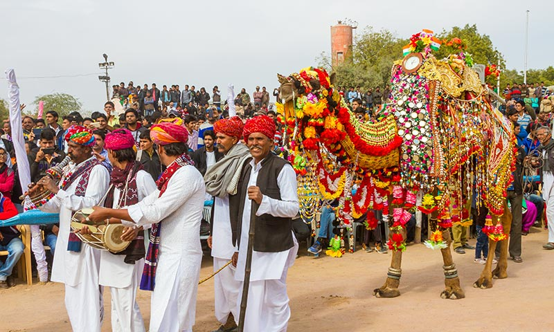 Bikaner Camel Festival Vacation Package