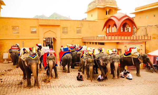 Luxury Trip to Rajasthan