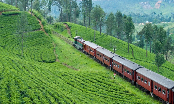 South India Tour By Train