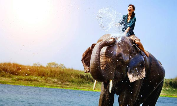 India Nepal Wildlife Tour Package